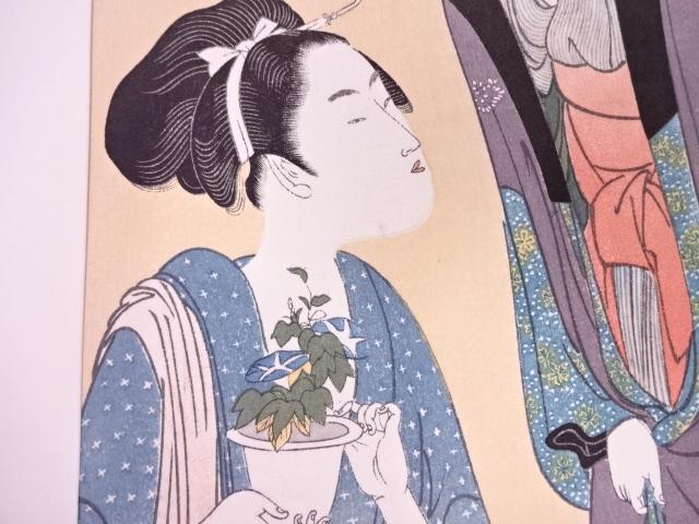 Utamaro plant d