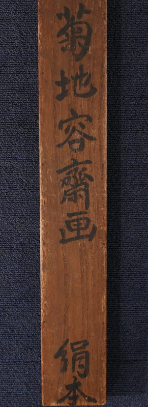 Kikuchi g