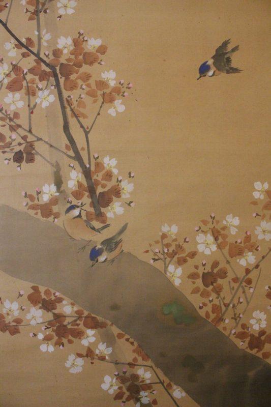Maekawa Bunrei – sakura c