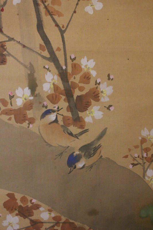 Maekawa Bunrei – sakura f