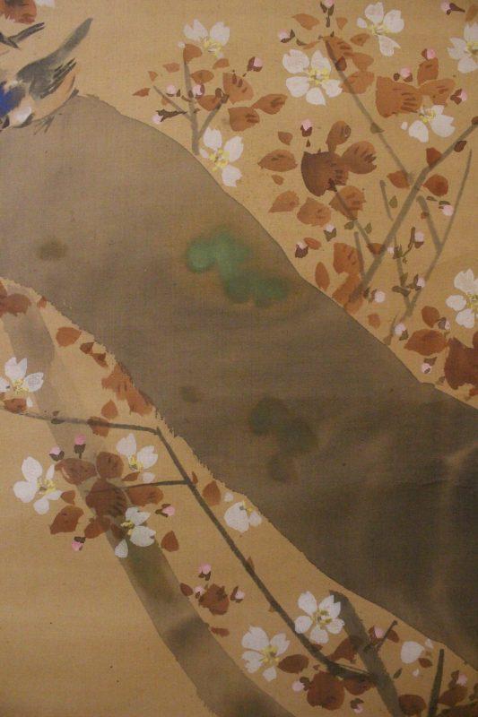 Maekawa Bunrei – sakura g